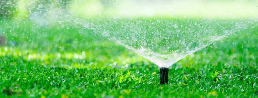 ¿Cómo elegir el sistema de riego automático para tu jardín?
